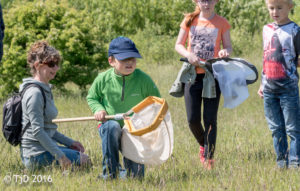 image of children taking part in a family activity at heyham nature reserve